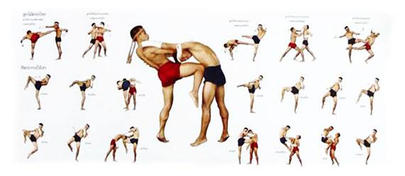 muay thai martial arts instructions poster demonstrating how to execute martial arts moves